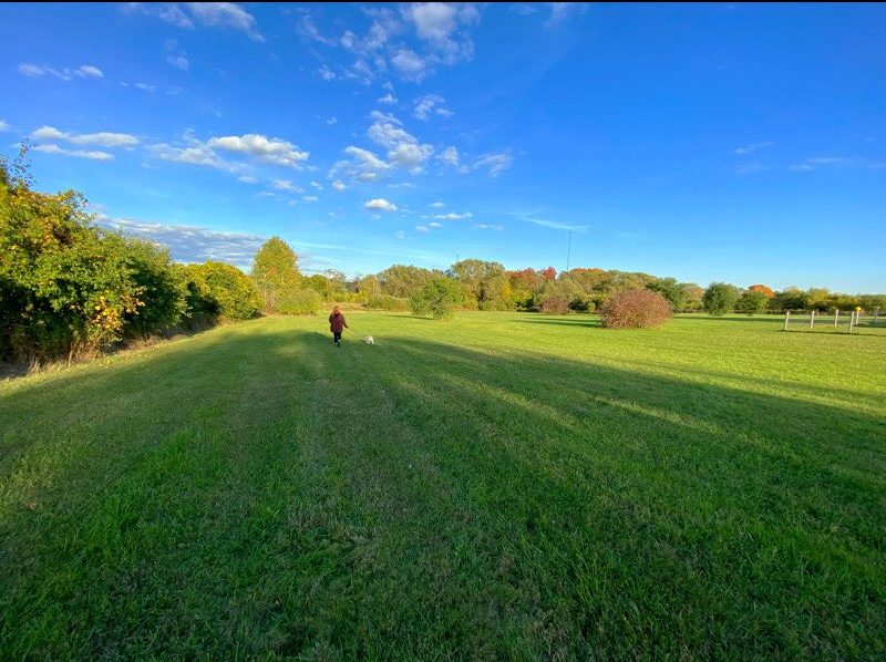 10 acres of dog paradise, just outside the GTA.